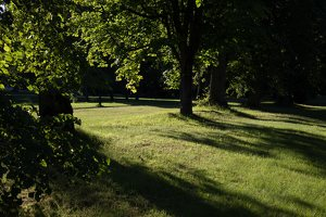 Gelgaudiškio dvaro parkas 9549
