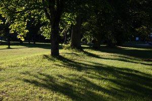 Gelgaudiškio dvaro parkas 9550