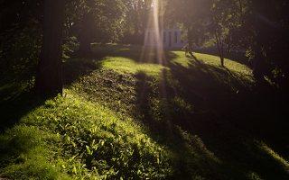 Gelgaudiškio dvaro parkas 9557
