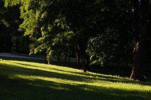 Gelgaudiškio dvaro parkas 9562