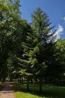 Trakų Vokė · Andrė parkas 9753
