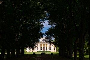Trakų Vokės dvaro rūmai · liepų alėja 9865