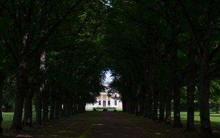 Trakų Vokės dvaro rūmai · liepų alėja 9868