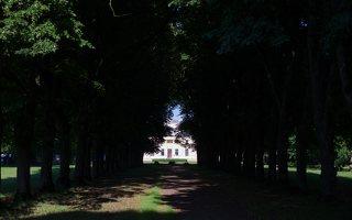 Trakų Vokės dvaro rūmai · liepų alėja 9961