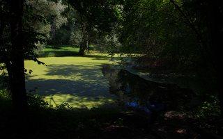 Lentvario dvaras · Andrė parkas, tvenkinys 0158