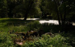 Lentvario dvaras · Andrė parkas, tvenkinys 0163