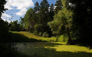 Lentvario dvaras · Andrė parkas, tvenkinys 0166