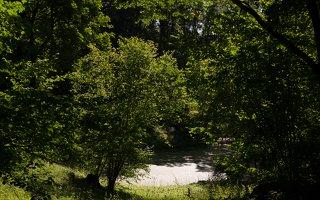 Lentvario dvaras · Andrė parkas 0177