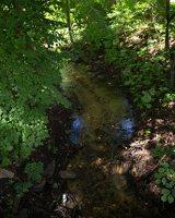 Lentvario dvaras · Saidės upelis nuo tiltelio 0190