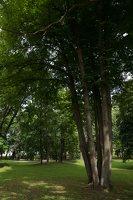Lentvario dvaras · Andrė parkas 0212