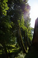 Medininkų pilis · apsauginis griovys 0346