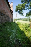 Medininkų pilis · siena 0357