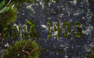 Liubavo dvaras · Helenos Slizniowos antkapio plokštės fragmentas 0913