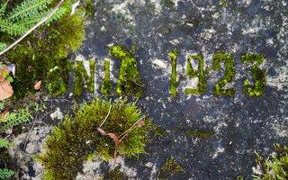 Liubavo dvaras · Helenos Slizniowos antkapio plokštės fragmentas 0916