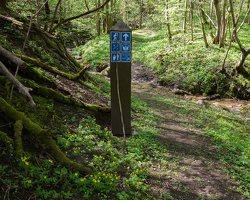 Grabijolų pažintinis takas · Saldusis (Ilgojos) upelis 1417