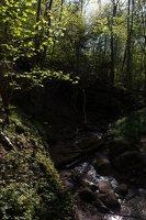 Grabijolų pažintinis takas · Saldusis (Ilgojos) upelis 1488
