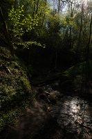 Grabijolų pažintinis takas · Saldusis (Ilgojos) upelis 1489