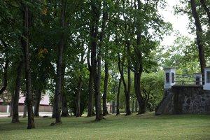 Taujėnų Šv. Kryžiaus Išaukštinimo bažnyčia 4601 · šventorius
