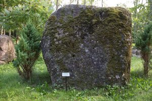 Taujėnų dvaras 4674 · parkas, akmuo