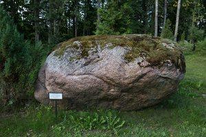 Taujėnų dvaras 4677 · parkas, akmuo