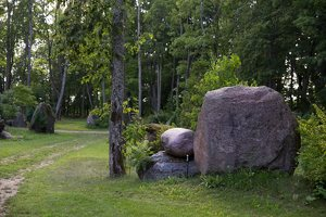Taujėnų dvaras 4682 · akmenų parkas