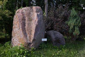 Taujėnų dvaras 4684 · parkas, akmuo