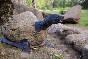 Taujėnų dvaras 4696 · parkas, akmeninis vėžlys