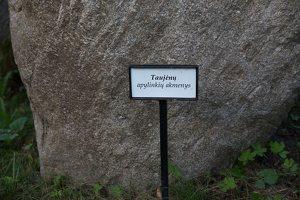 Taujėnų dvaras 4698 · parkas, akmuo