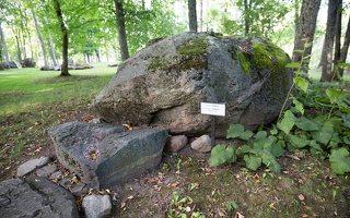 Taujėnų dvaras 4753 · parkas, akmuo