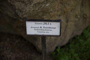 Taujėnų dvaras 4754 · parkas, akmuo
