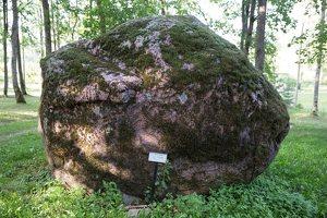 Taujėnų dvaras 4762 · parkas, akmuo