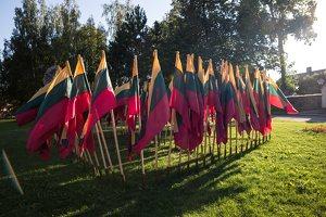 Musninkai · vėliavos nepriklausomybės šimtmečiui 5153