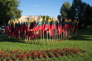 Musninkai · vėliavos nepriklausomybės šimtmečiui 5156