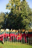 Musninkai · vėliavos nepriklausomybės šimtmečiui 5161