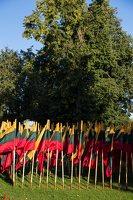 Musninkai · vėliavos nepriklausomybės šimtmečiui 5162