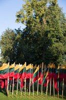 Musninkai · vėliavos nepriklausomybės šimtmečiui 5165