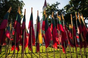 Musninkai · vėliavos nepriklausomybės šimtmečiui 5194