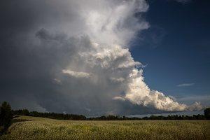 Šumskas · debesys virš grikių lauko 5428