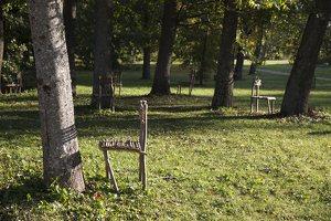 Vienas prieš vieną / The Tree is Present · Birutė Bikelytė ir Eglė Lekevičiūtė 6519