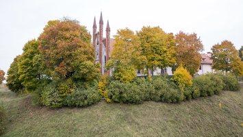Senųjų Trakų piliakalnis 6655