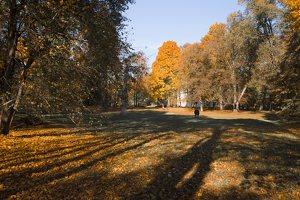Verkiai · dvaro parkas, ruduo 6739