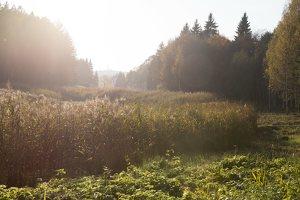 Verkiai · Turniškių upelio tvenkinys, ruduo 6755