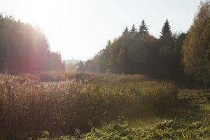 Verkiai · Turniškių upelio tvenkinys, ruduo 6756