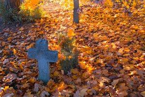 senosios Onuškio kapinės 6954