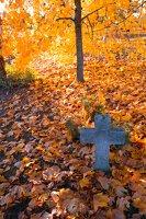 senosios Onuškio kapinės 6955