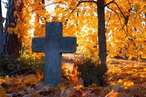 senosios Onuškio kapinės 6956