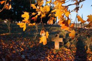 senosios Onuškio kapinės 6958