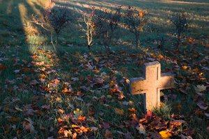 senosios Onuškio kapinės 6959