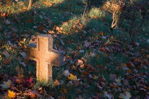senosios Onuškio kapinės 6960