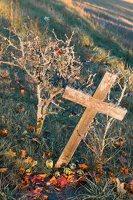 senosios Onuškio kapinės 6961